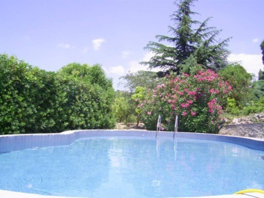Villa con piscina benvenuti pernottamento e colazione - Villa con piscina sicilia ...
