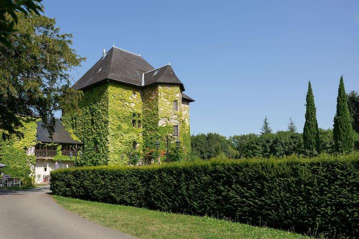Dans les Vignes, 10 Mins de Chambéry, Piscine | Chateau Authentique