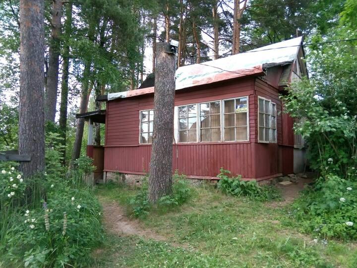 Guest Hut in North Switseland  -Toksovo