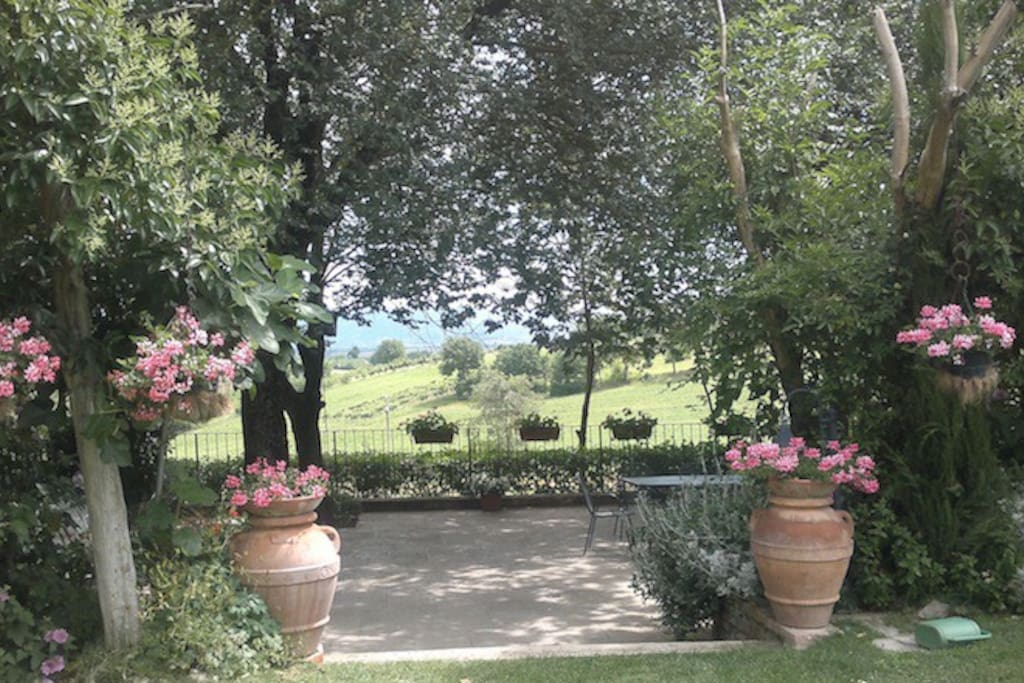 Terraza e giardino