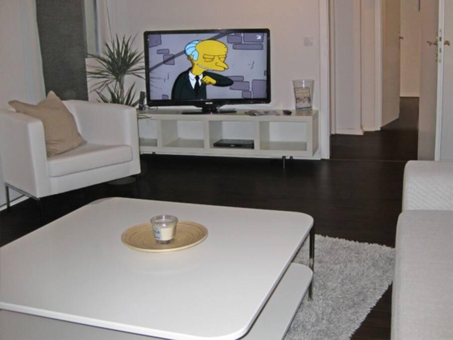 Technisch: 42'' LCD Fernseher und DVD-Player im Wohnzimmer
