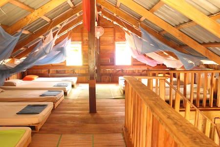 Dragonfly: dormitory and jungle hammocks - Krong Preah Sihanouk