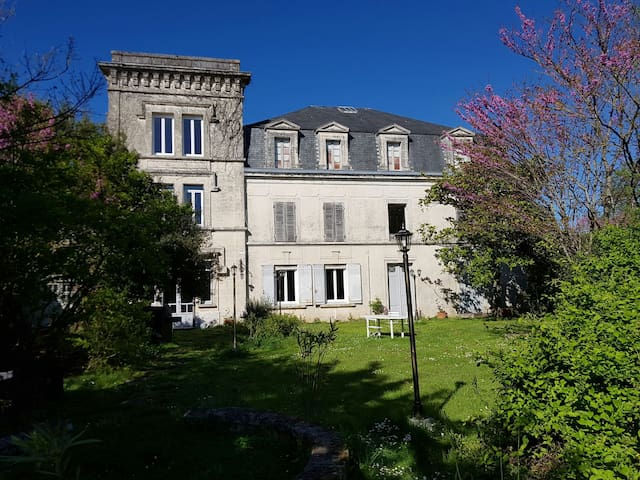 Castle near COGNAC - cognac - Castle