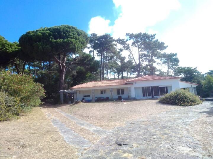 Quarto em Vivenda no meio do Pinhal a 5m da Praia