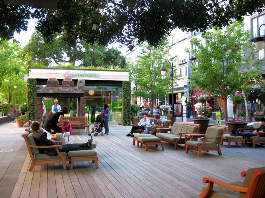City Suite Santana Row Apartments For Rent In San Jose California Unite