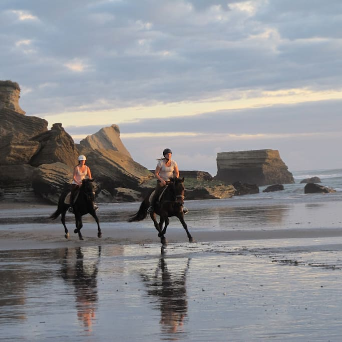 horse riding at beach opposite