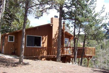 Horseshoe Lodge Divide Colorado  - Divide