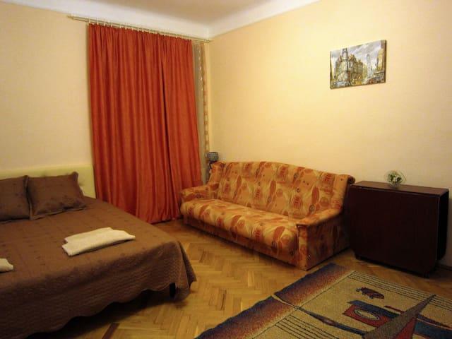 1-комнатная квартира в самом центре - Chernivtsi - Apartment