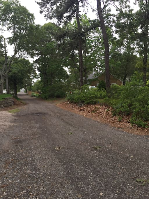 Dirt road leading to house