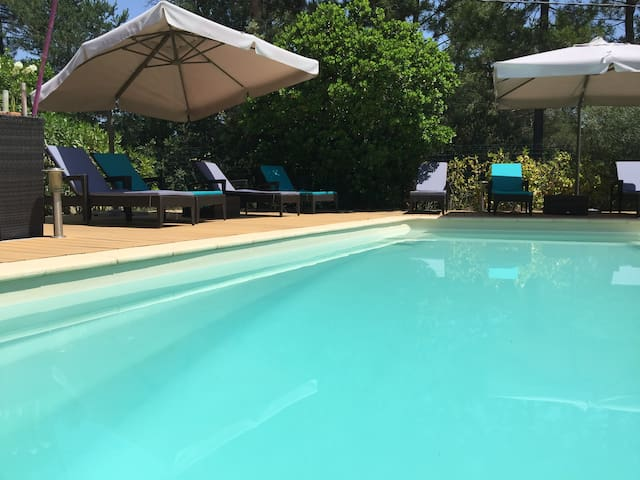 Villa in Var of France with pool - Montauroux - Villa