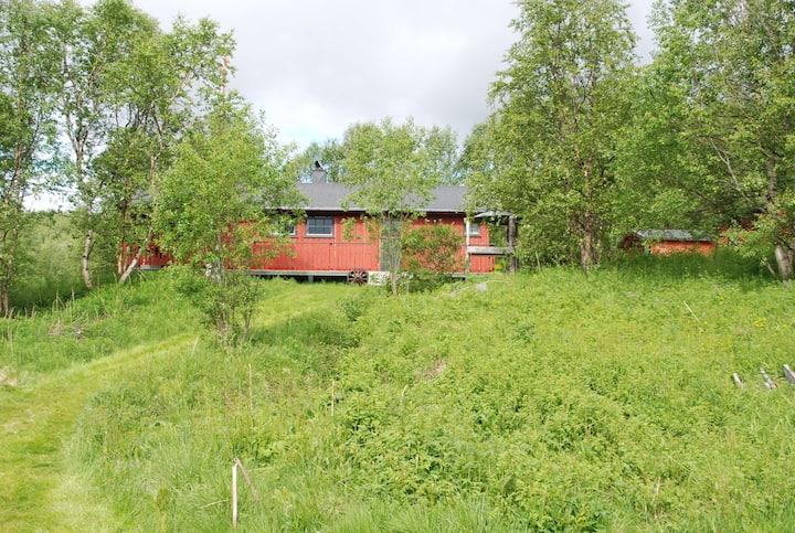 Forsbakken Cabin Evenesdal