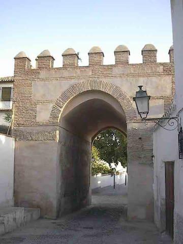 CASA DEL ARCO-ALBAYZÍN. TERRAZA Y JARDÍN.