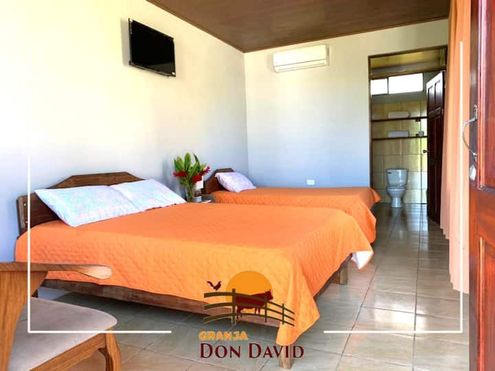 "Tortuguero ""Don David"" Eco Friendly Farm"