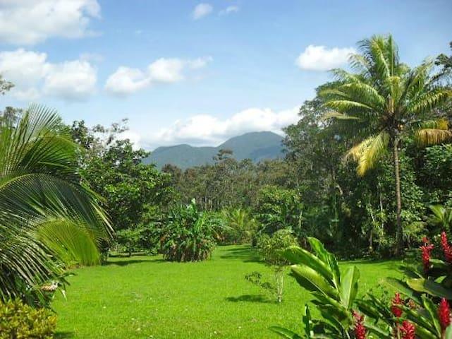 Cataratas Bijagua Lodge - Bijagua