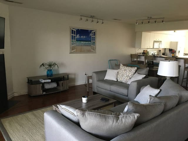 Living room - couple nice couches and a 55 Inch Roku TV