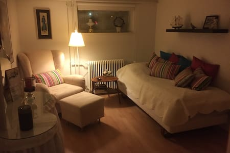 A nice room with access to kitchenette and bath - Hammel