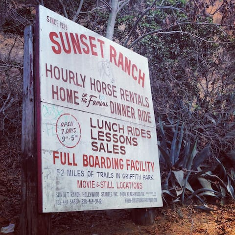 Like Horseback riding?  The Sunset Ranch is next door.
