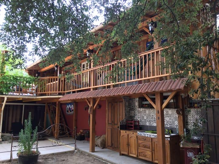 Casacoquelicot Un jardin sud-américain en Provence