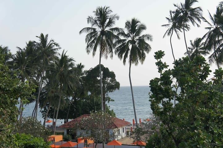 View from guesthouse