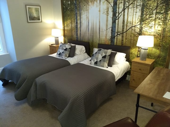 Plas Tan y Graig B&B Guest House - Room 1 - Woodland