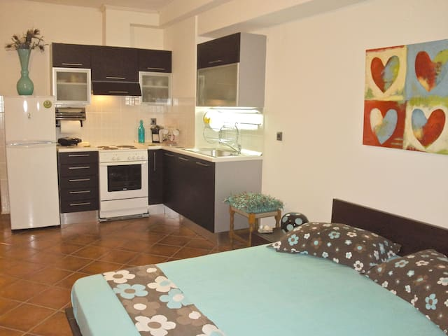 Cosy studio in the centre of town! - Aigio