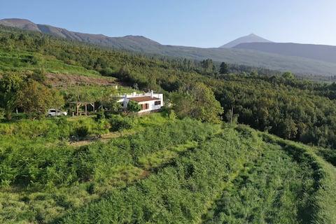 Casa Rural La Jara