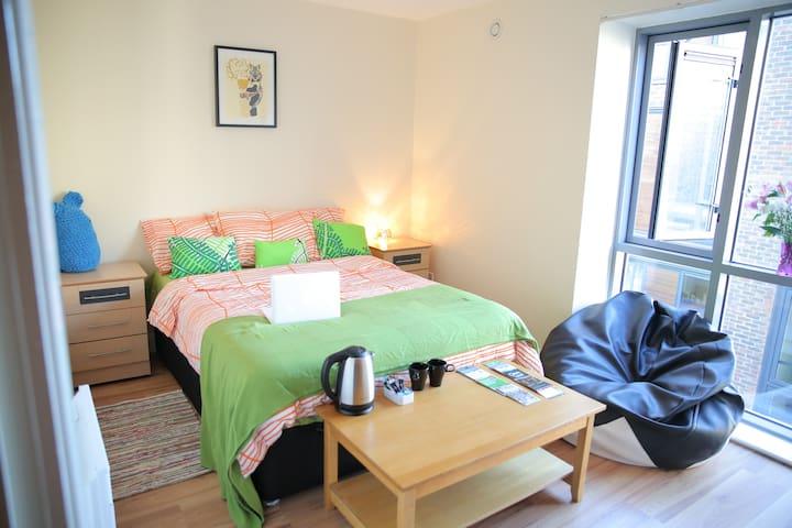 Great Room in Dublin City Centre!!! - Dublin - Apartment