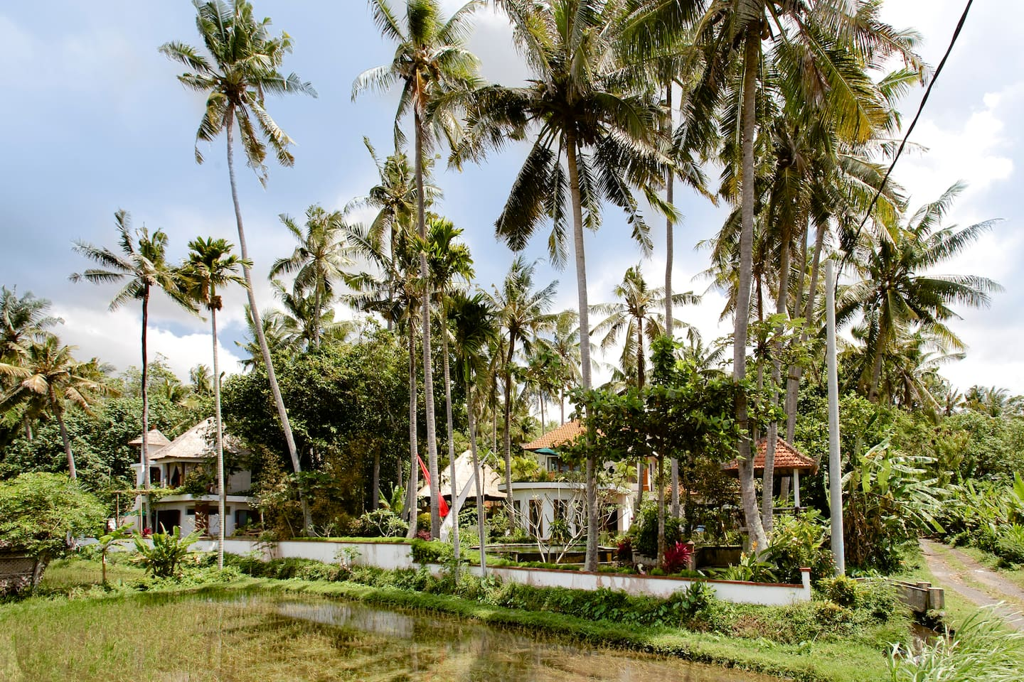 The Retreat is nested into over 2000 sq. mts. of mixed coconut and fruit orchard