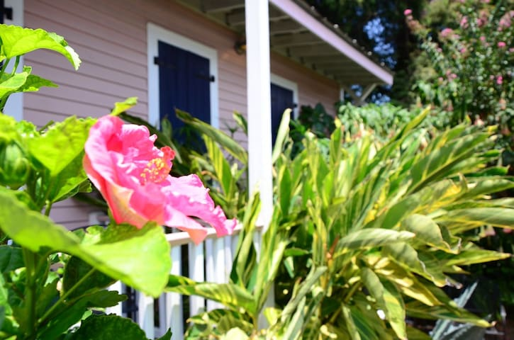 Victorian Cottage in the Bywater  - Nueva Orleans - Bed & Breakfast
