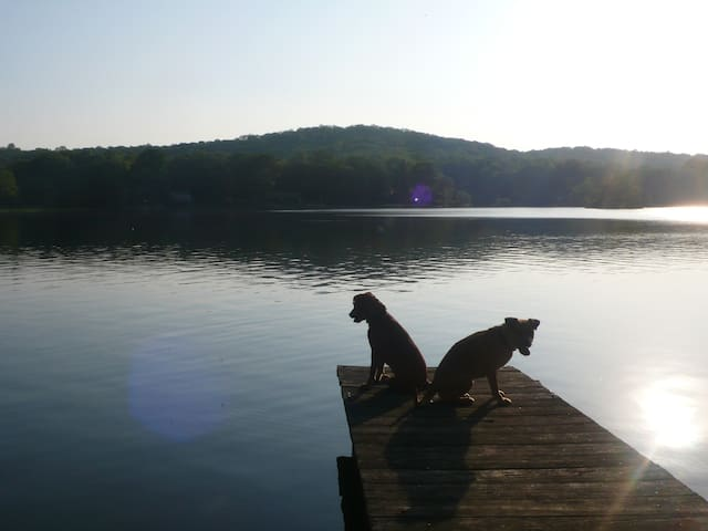 Our (your) private dock (Dogs Not Included)
