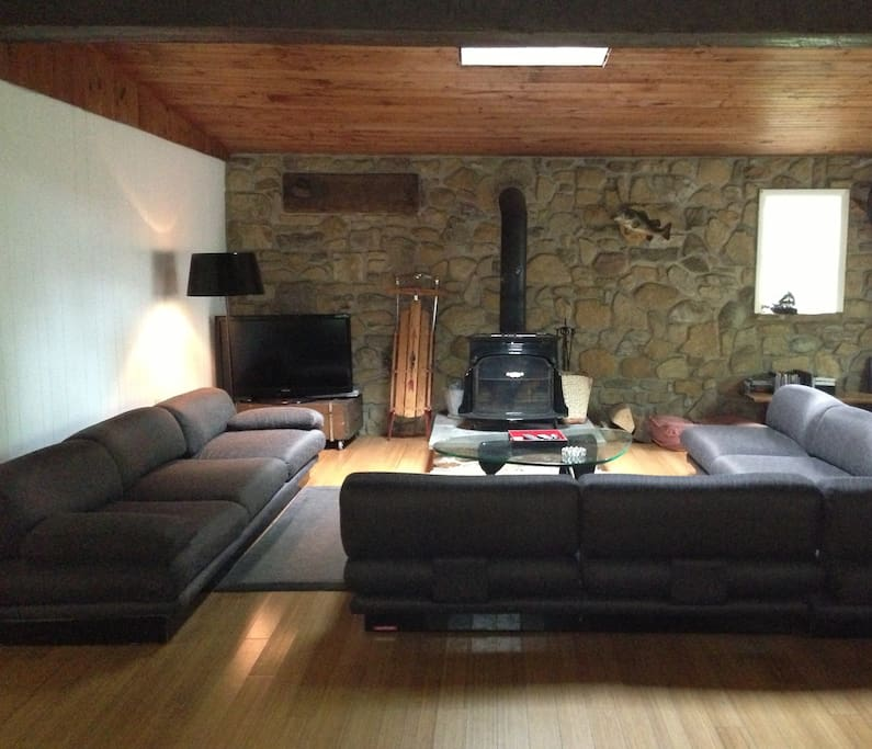 Den/Family room with fireplace & TV/DVD