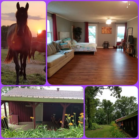 Peaceful Farmhouse Sunsets-30min to Nash Airport