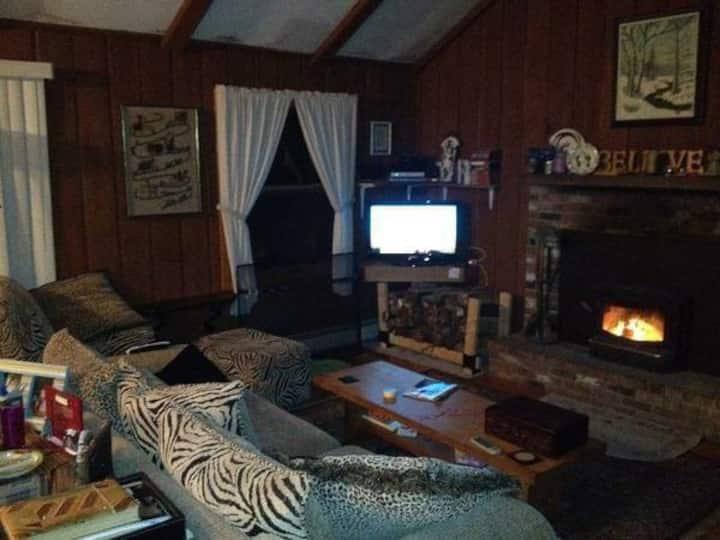 Mt Mount Snow Area House Wilmington VT- 10 minutes