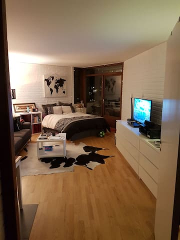 Cozy studio apartment- Oslo.