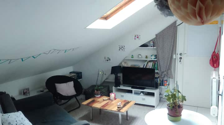 Nice 2 room apartment at Place de la République