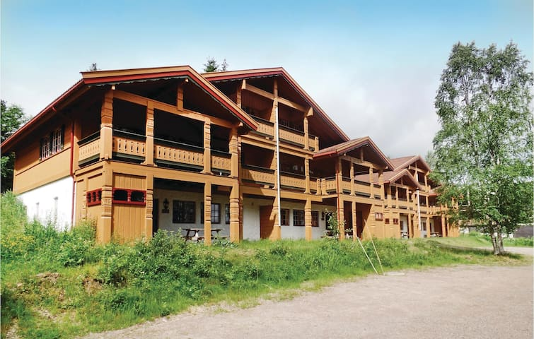 Holiday apartment with 3 bedrooms on 70m² in Trysil