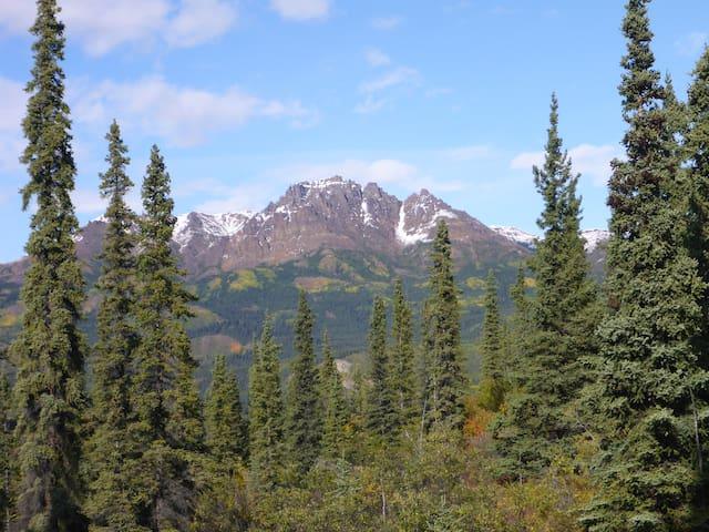 Stellar Views from Karma Ridge Home - Denali National Park and Preserve