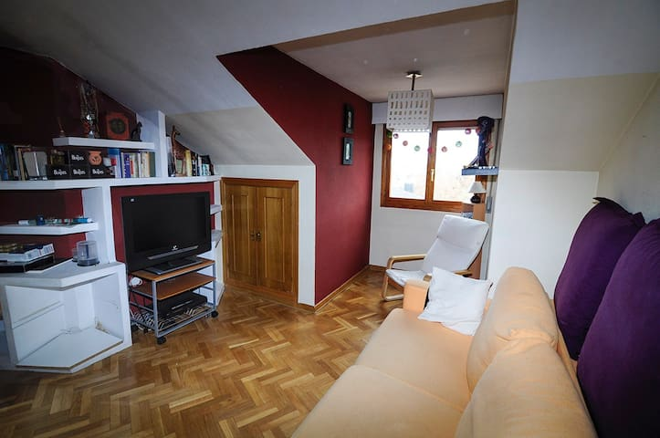Cozy flat in Segovia. - Segovia - Apartment