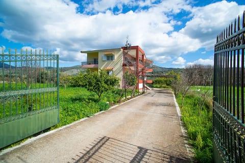 Spacious Holiday Home in Astakos near the Sea