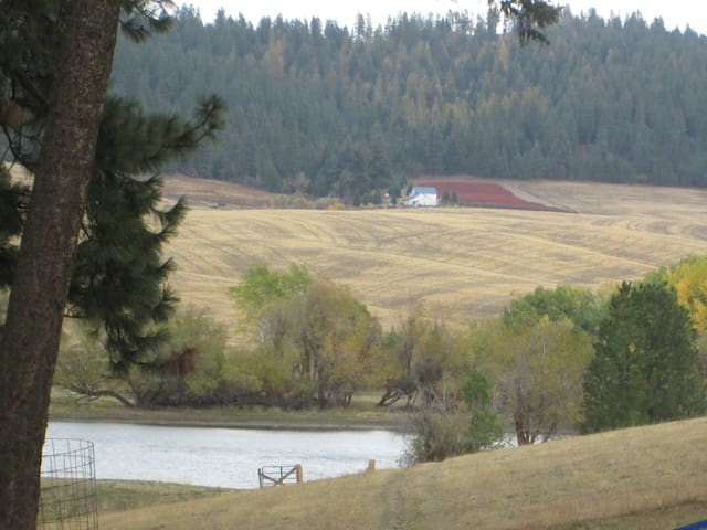 10 Minutes North of Spokane Valley - Spokane - Casa