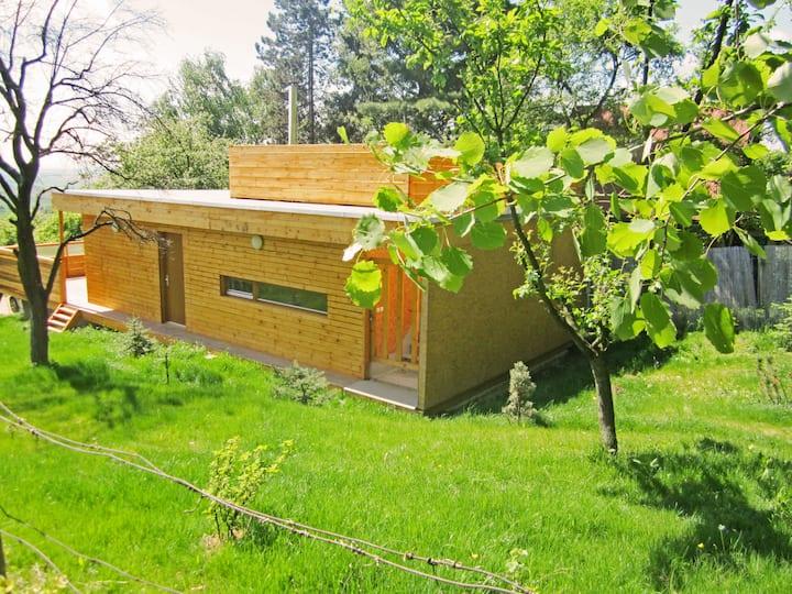 Recreational house in garden