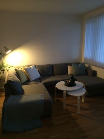 Cozy 1bd apartment.