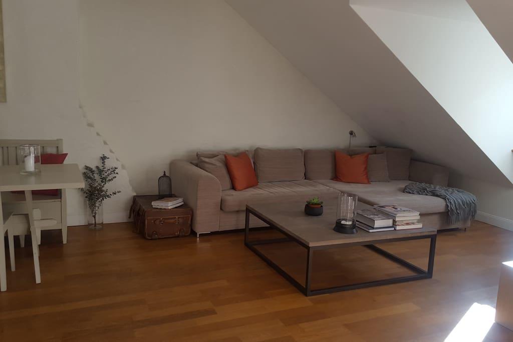 Huge comfy sofa (sleeps 1)