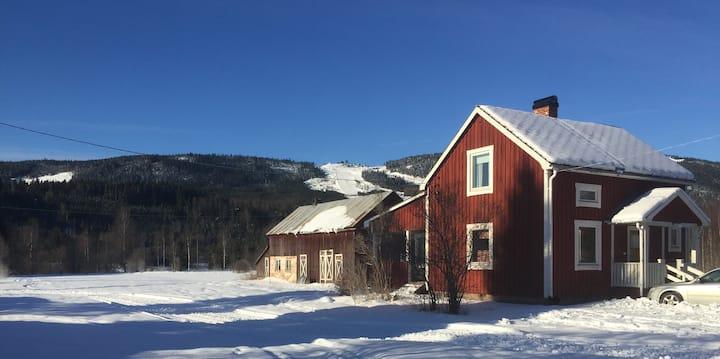 Husdjursvänlig stuga nära Branäs skidanläggning