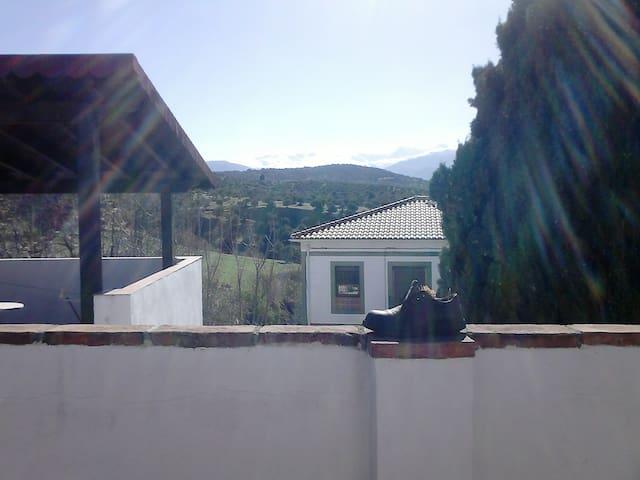 Casa de los libros - habitación individual - Granada - House