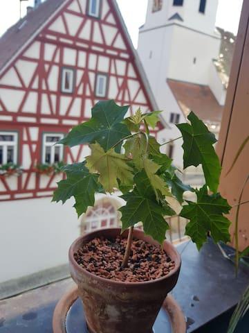 Wunderschöne Maisonettwohnung im Fachwerkhaus - Erligheim - Condomínio