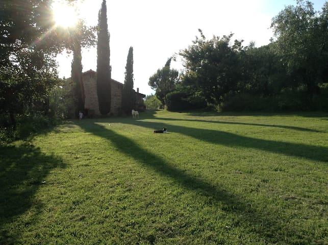 Colline toscane: loft in fienile ristrutturato - Rufina - Loft