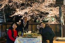 ソメイヨシノが咲く時期には、隣の磯部公園の桜をライトアップして、夜桜を楽しみます。