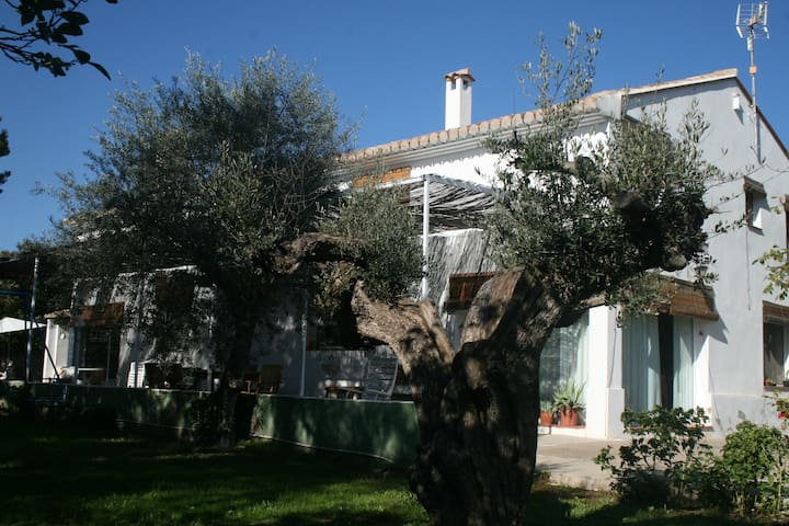 El Olivo, family country house near the beach - Navajas - Huis