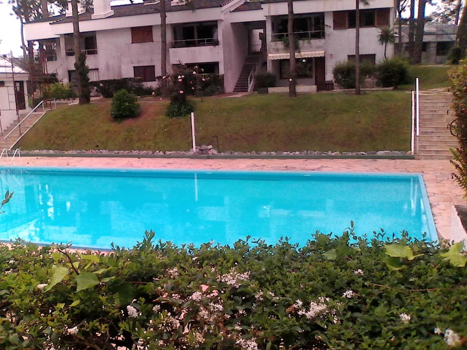Amplia piscina con solarium.